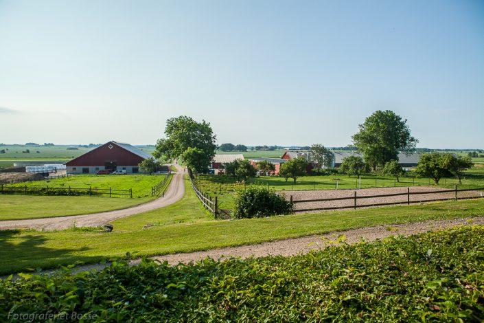 Alvastra Kungsgård 17